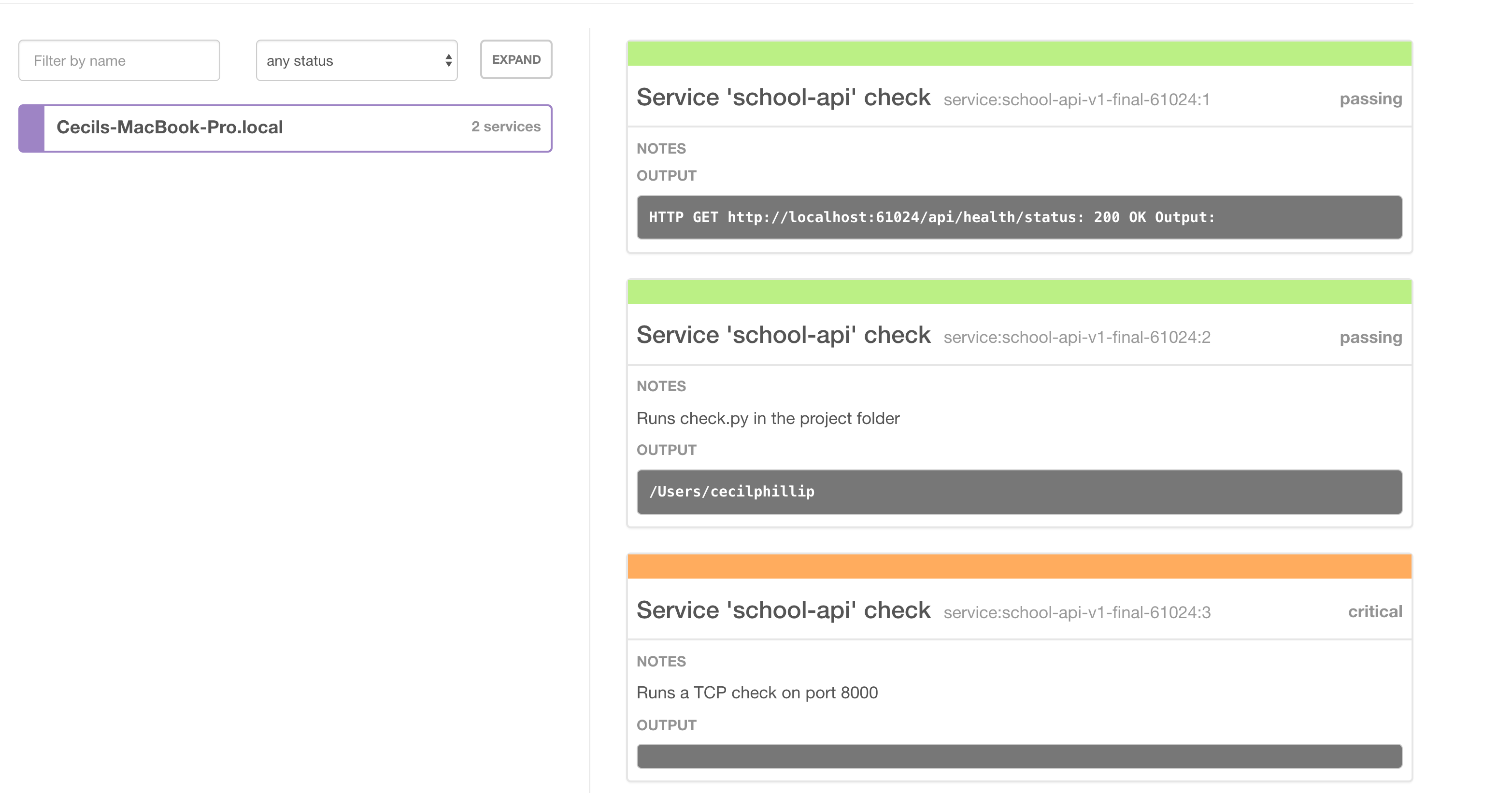 Using consul for health checks with asp net core for Consul http health check
